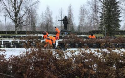 Puutarhurit ja Pieksämäen seurakunta pitkäaikainen työelämäpari